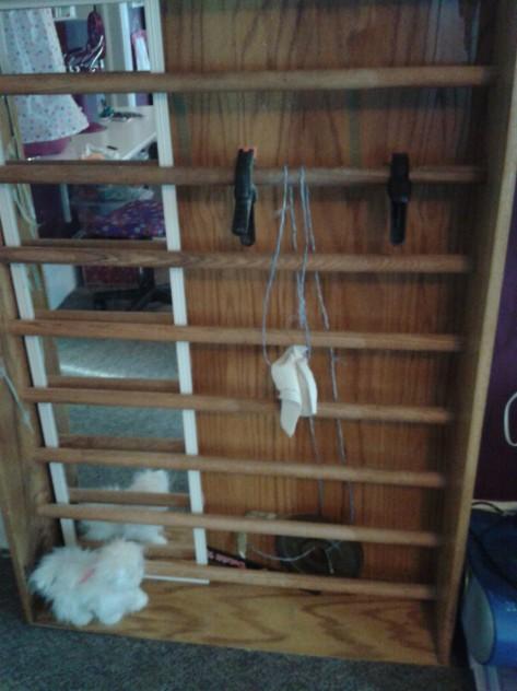 Schroth Ladder Apparatus